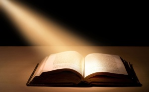 GREAT SHOT OF BIBLE WITH SPOTLIGHT - 1 COR 12.14 19