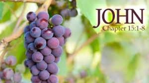 John 15 5-8