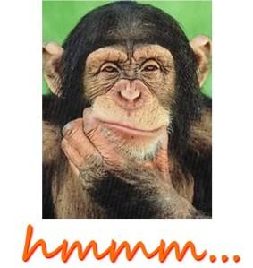 Hmmmm Monkey Thinking